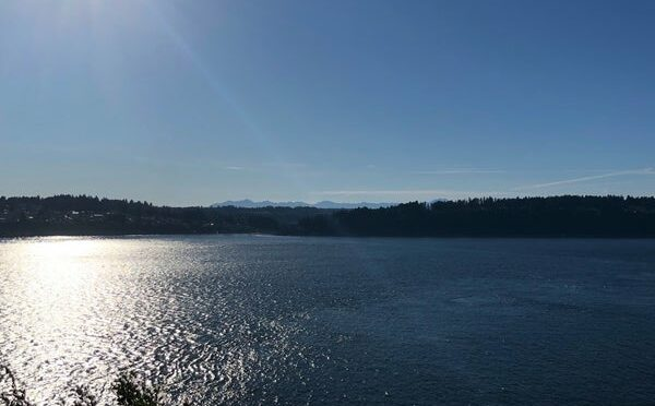 Opening Picnic at Point Defiance Park